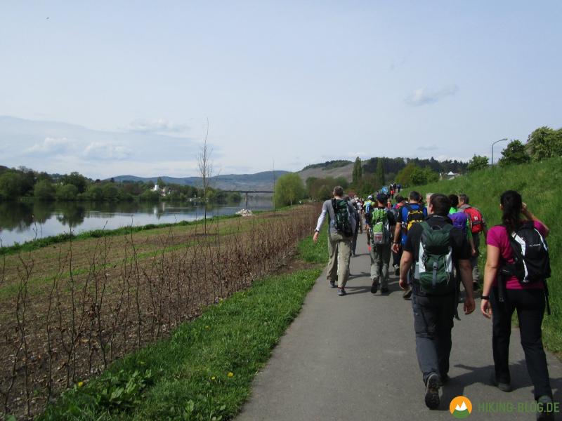 24-Stunden-Wanderung-Moselsteig-03