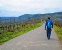 24-Stunden-Wanderung-Moselsteig-05