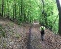 24-Stunden-Wanderung-Moselsteig-12