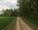 24-Stunden-Wanderung-Moselsteig-15