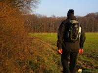 Fjaellraeven-Skogsoe-Jacket-12
