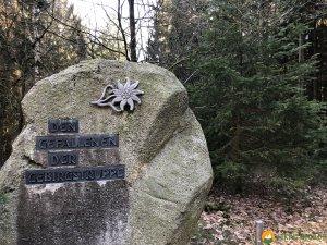 Auf-den-Hoehen-des-Ebbegebirge-19
