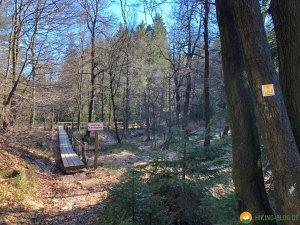 Auf-den-Hoehen-des-Ebbegebirge-17
