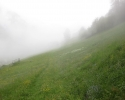 bergfreunde_bloggertreffen_zillertal-_31