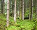 bergfreunde_bloggertreffen_zillertal-_35