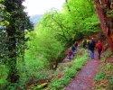 Bloggerwandern-RLP-2015-16.jpg