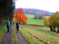 Bloggerwanderung-Lahnhoehen-13