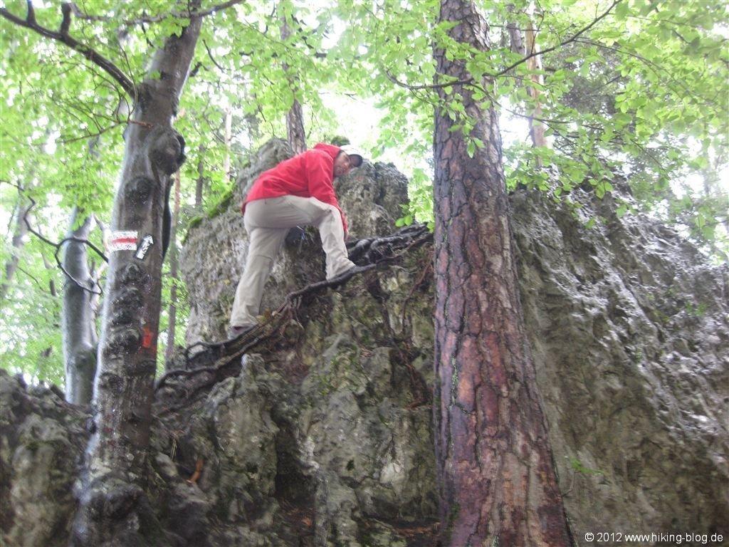 Klettersteig Fränkische Schweiz : Kletterhörnchen in der fränkischen schweiz u jdav nürnberg