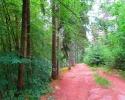 Felsenland-Sagenweg-Etappe1-13