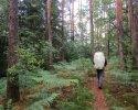 Felsenland-Sagenweg-Etappe1-29