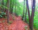 Felsenland-Sagenweg-Etappe1-30