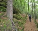 Felsenland-Sagenweg-Etappe1-06