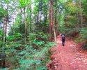 Felsenland-Sagenweg-Etappe1-18
