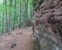 Felsenland-Sagenweg-Etappe2-19