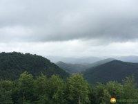 Felsenland-Sagenweg-Etappe3-09