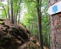 Felsenland-Sagenweg-Etappe3-12