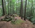 Felsenland-Sagenweg-Etappe3-24