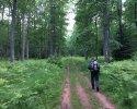 Felsenland-Sagenweg-Etappe3-28