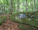 Felsenland-Sagenweg-Etappe3-21