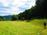 Felsenland-Sagenweg-Etappe4-07