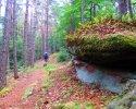 Felsenland-Sagenweg-Etappe4-12