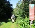 Heidschnuckenweg-Bispingen-Soltau-07