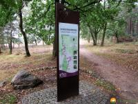 Heidschnuckenweg-Fischbek-Buchholz-01