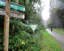 Heidschnuckenweg-Fischbek-Buchholz-16