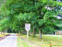 Heidschnuckenweg-Undeloh-Bispingen-06