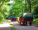 Heidschnuckenweg-Undeloh-Bispingen-11