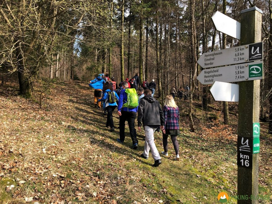 Hiking-Barcamp-2019-Diemelsee-Willingen-16