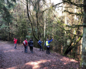 Hiking-Barcamp-2019-Diemelsee-Willingen-14