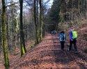 Hiking-Barcamp-2019-Diemelsee-Willingen-15