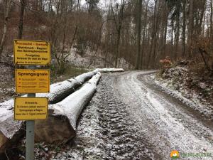 Huegelgrabwanderung-Odenwald-11