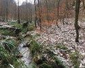 Huegelgrabwanderung-Odenwald-10