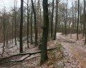 Huegelgrabwanderung-Odenwald-16