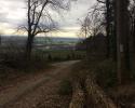 Huegelgrabwanderung-Odenwald-19