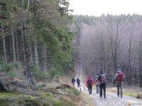 bloggerwanderung_kall_trail_westwall13