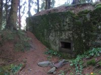 bloggerwanderung_kall_trail_westwall17
