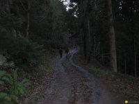 bloggerwanderung_kall_trail_westwall23