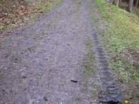 bloggerwanderung_kall_trail_westwall07