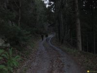 bloggerwanderung_kall_trail_westwall23