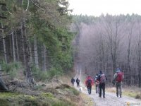 bloggerwanderung_kall_trail_westwall13
