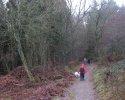 bloggerwanderung_kall_trail_westwall03