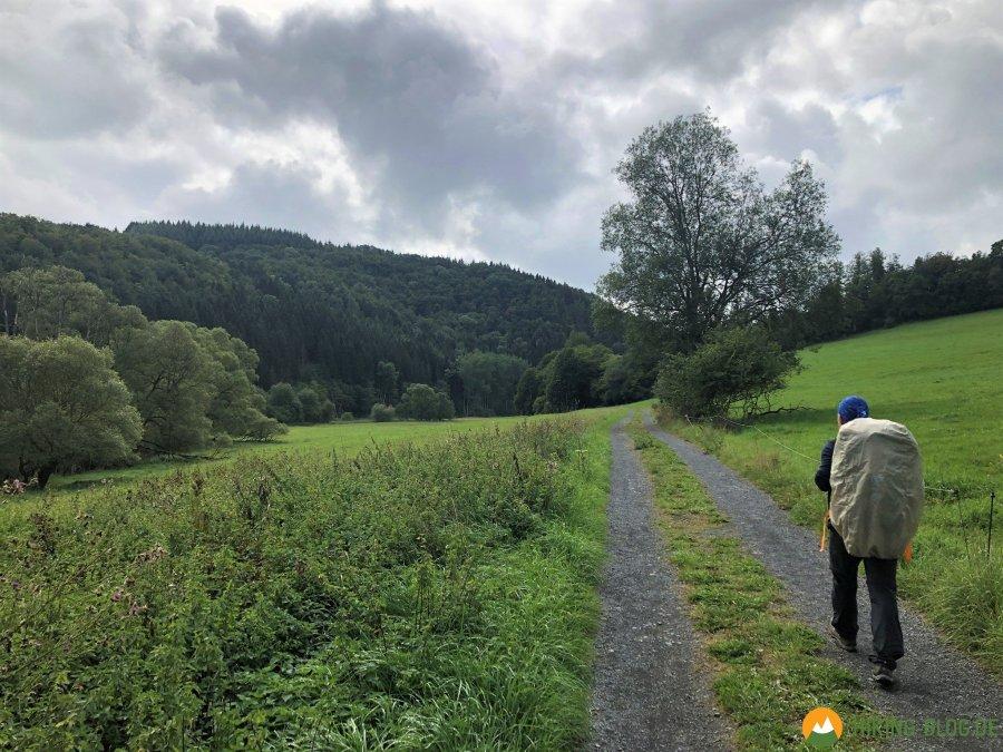Lieserpfad-Etappe2-10