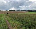 Lieserpfad-Etappe3-09