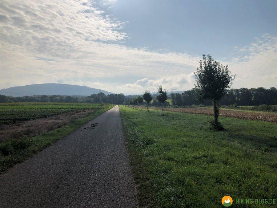 Lieserpfad-Etappe4-05