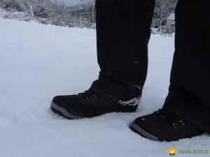 Lowa-Sedrun-GTX-Mid-Winterschuh-24