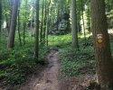 Mullerthal-Trail-Echternach-Consdorf-05