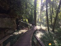 Mullerthal-Trail-Consdorf-Larochette-08
